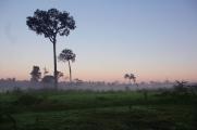 Fincas sunrise_edited